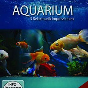 Aquarium – 3 Relaxmusik Impressionen: Amazon.de: Relaxation & Chill, *, Relaxation & Chill: DVD & Blu-ray